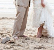 Bay Area Wedding Planner | Carolyn Wilson Weddings & Events